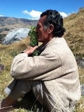Amazonian plant medicine doctor